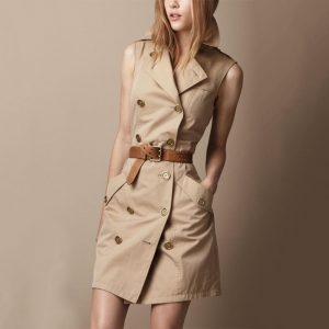 Brit Trench Coat Dress