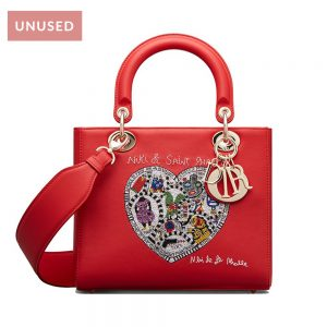 Lady Dior Niki De Saint Phalle Bag